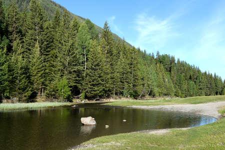 Mountain river in Altai Republic