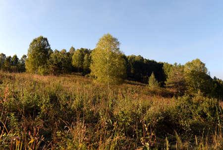Am frühen Morgen in den Bergen des Altai Krai. Westsibirien Standard-Bild