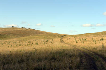 Western Siberia. The road in the foothills of the Altai mountains