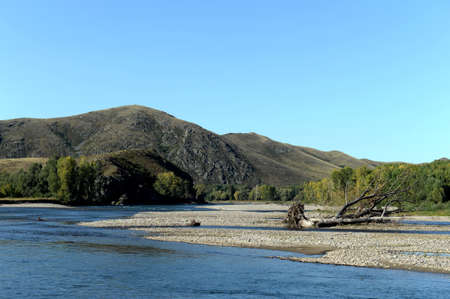 Mountain river Charysh in Western Siberia. Russia