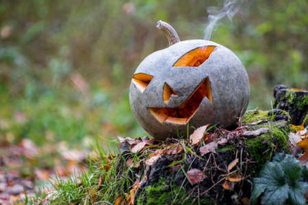 Halloween pumpkin with smoke in the forest. Lays on the stump Stock Photo