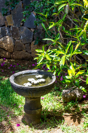relaxion: Stone bowl with water and flowers on the   stone wall and greenery Stock Photo