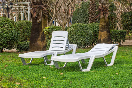 Two white  plastic sunbeds in the tropical garden