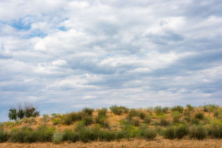 spaciousness: Bright summer Prairie landscape with a beautiful cloudy sky.
