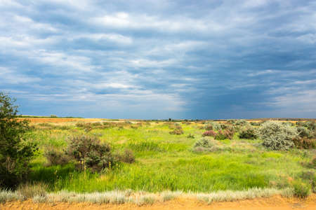 cloudy: Bright summer Prairie landscape with a beautiful cloudy sky.