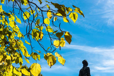 macrophoto: Bright yellow leaves against a beautiful cloudy sky. In the right corner sculpture to Nikolay Ostrovsky. Stock Photo
