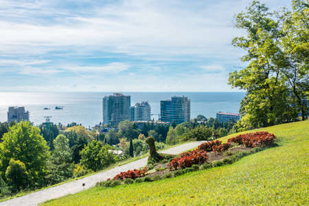 subtropics: In the Park-the arboretum of Sochi city on a Sunny autumn day.