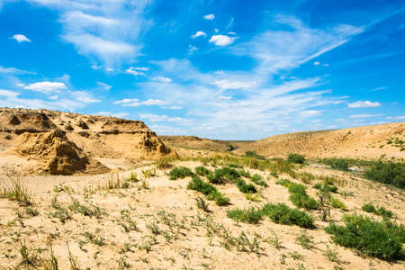 Desert landscape on a summer day near the lake Baskunchak, Astrakhan region, Russia.