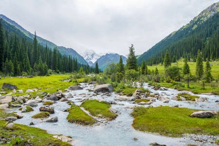 turbulent: Beautiful mountain landscape with a turbulent river on a summer day, Kyrgyzstan Stock Photo