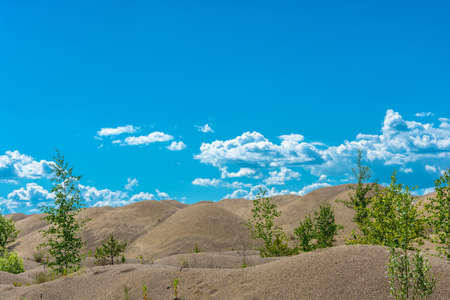 Beautiful sand dunes, overgrown with small trees and shrubs in a Sunny summer day. Stock Photo