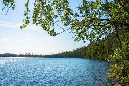 여름 하루에 직접적인 햇빛에 아름 다운 물 풍경.