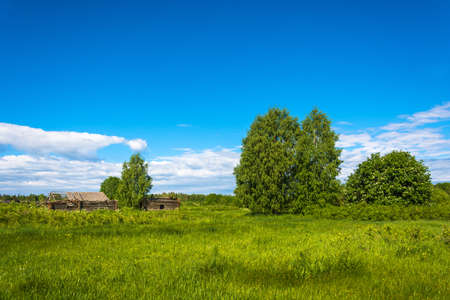 kostroma: Landscape with a dead village Burdovo on a summer day, Kostroma oblast, Russia. Stock Photo