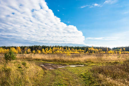 kostroma: Dirt road at autumn day in Kostroma region, Russia.