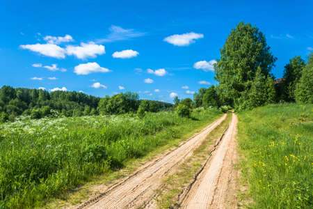 Unpaved sandy road among green grass in a Sunny summer day.