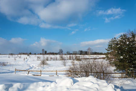 Beautiful winter landscape in a sunny frosty day in central Russia. Фото со стока