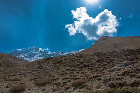 A gentle slope covered with scant vegetation in the Himalayas in the contour light, Nepal.