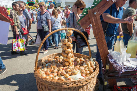 Luh, Ivanovo region, Russia - 08252018: Large basket with onions at the regional festival-fair Luk-luchok August 25, 2018 in the city of Luh, Ivanovo region, Russia. Redakční