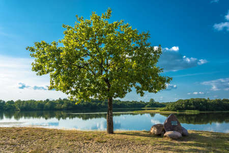 Beautiful scenery with a lonely tree and large stones on the river bank in a summer sunny day.