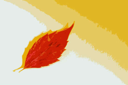 Bright red leaf on a white-and-yellow background. Photographed close-up.