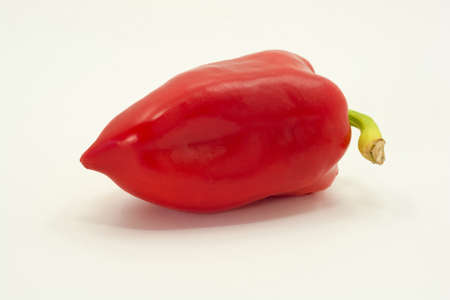 Bright red pepper with green tail on white background. Фото со стока