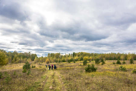 A small group of tourists is walking along a field road on an autumn day, Russia. Фото со стока
