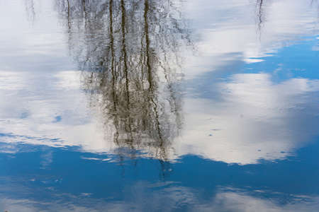 The mirror of the river.