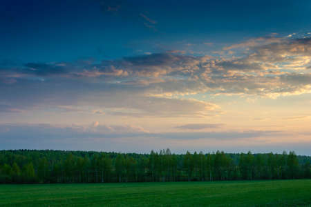 Beautiful evening landscape with bright clouds and green forest and field. Stok Fotoğraf