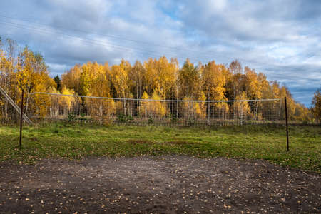 Volleyball net between metal posts on a background of a birch forest with yellow leaves on an autumn day. Stockfoto