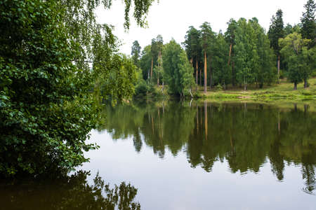 The reflection of tall trees in the mirror surface of the water on a summer day.