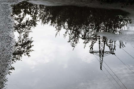 Reflection of tall grass, power lines and the sky with white clouds in a large puddle on the asphalt. Фото со стока