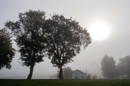 Early foggy morning in Suzdal with a large white sun disk and silhouettes of trees.
