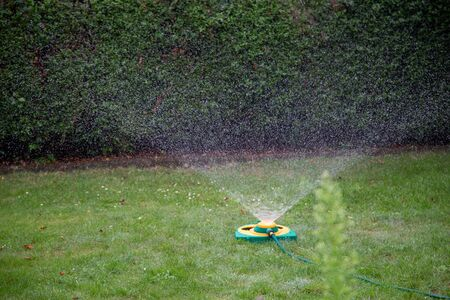 a lawn sprinkler watering a meadow with fine droplets in summer Stockfoto