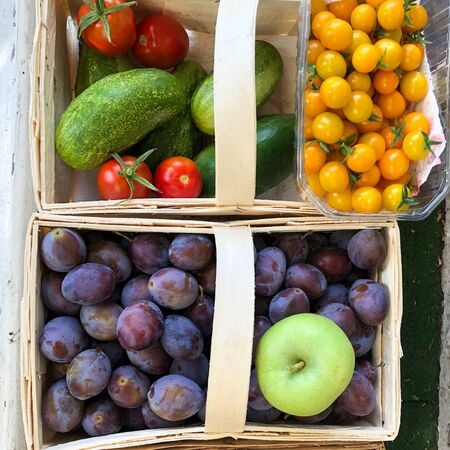 Freshly harvested tomatoes, cucumbers, plums and an green apple in baskets