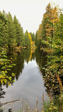 A small lake in the forest near the Meilerhütte of Schöneck in the Vogtland in Saxony in autumn. Reklamní fotografie