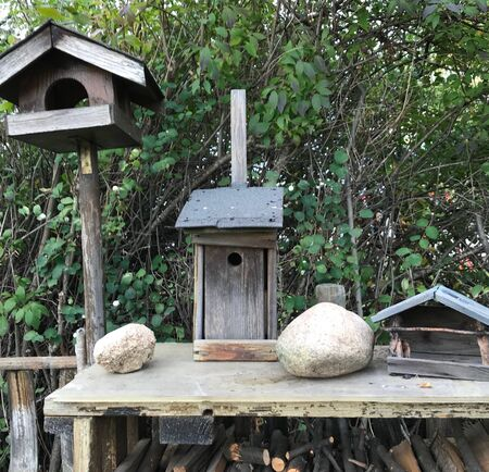 Various old birdhouses on a pile of wood are waiting for residents. Reklamní fotografie