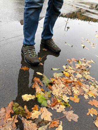 A little child is standing with his shoes in a puddle of leaves in autumn.