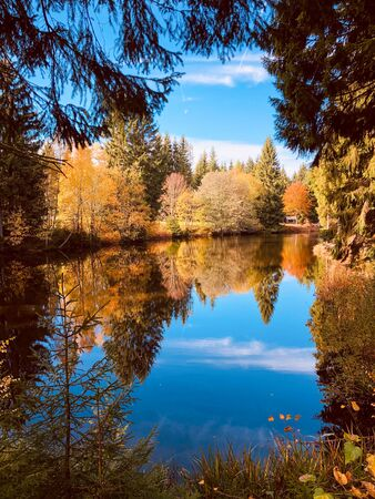 A small lake in the forest near the Meilerh?tte of Schöneck in the Vogtland in Saxony in autumn. Reklamní fotografie