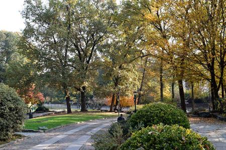 Parki Turynu rozbierają się i upadają jesienią