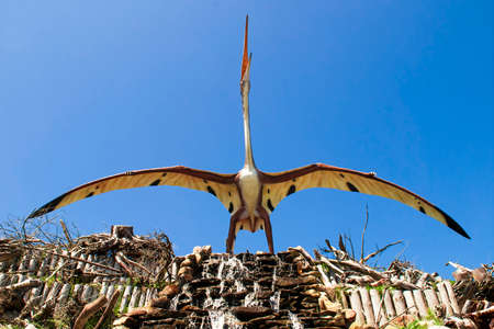 Sculpture of dinosaur   pterosaurs , archosaurs in live size