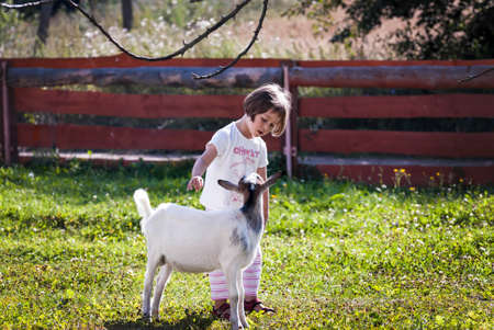 Little girl stroking and talking to a goat at farm  photo