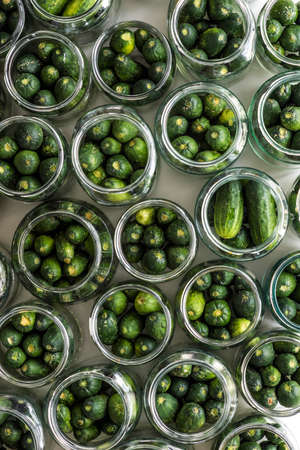 acetic: Top view of jars of prepared cucumbers ready to pickling Stock Photo