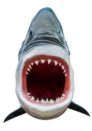 Model van de haai met open mond close-up. Geïsoleerd op wit. Inbegrepen weg.