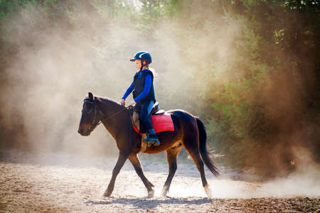 horse sleigh: A young girl riding her pony during riding lesson, outside. Natural sun rays shining in dust during sunset. Stock Photo