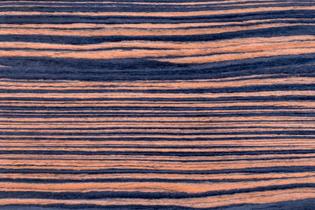 ebony tree: Texture of ebony veneer