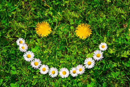 https://us.123rf.com/450wm/fotoyou/fotoyou1710/fotoyou171000018/89047622-smiley-face-of-yellow-dandelions-and-white-daisies-on-green-grass-at-summer-day-.jpg?ver=6