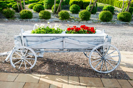 White and red flowers in a decorative vintage wooden cart.