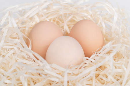 Raw brown and white eggs in nest made of staw shreded paper.