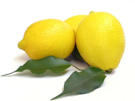 leaflets: Three lemons with leaflets
