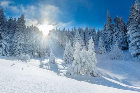 Landscape of beautiful winter in Polish Beskidy Mountains. Stock Photo