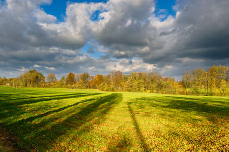 Autumn landscape of field and golden, yellow trees.Beautiful scenery with clouds on the blue sky.